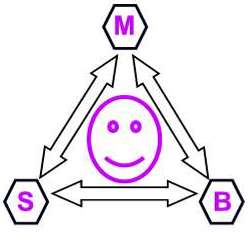 mind, body, spirit diagram